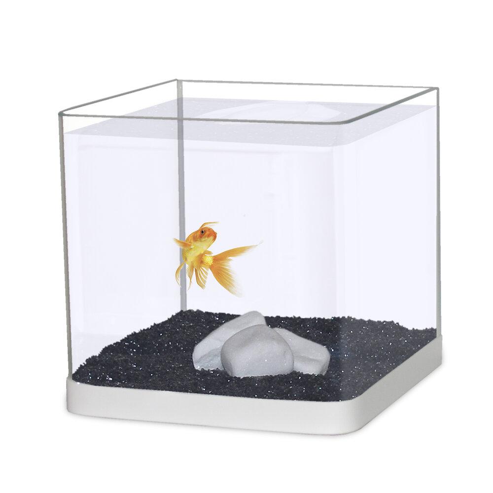 Aquarium CAPAC bombé blanc avec 1kg de sable 20cmx20cmx20cm