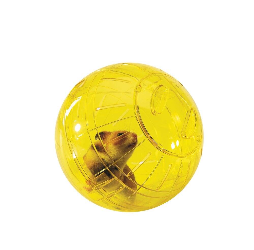 Boule d'exercice pour hamster