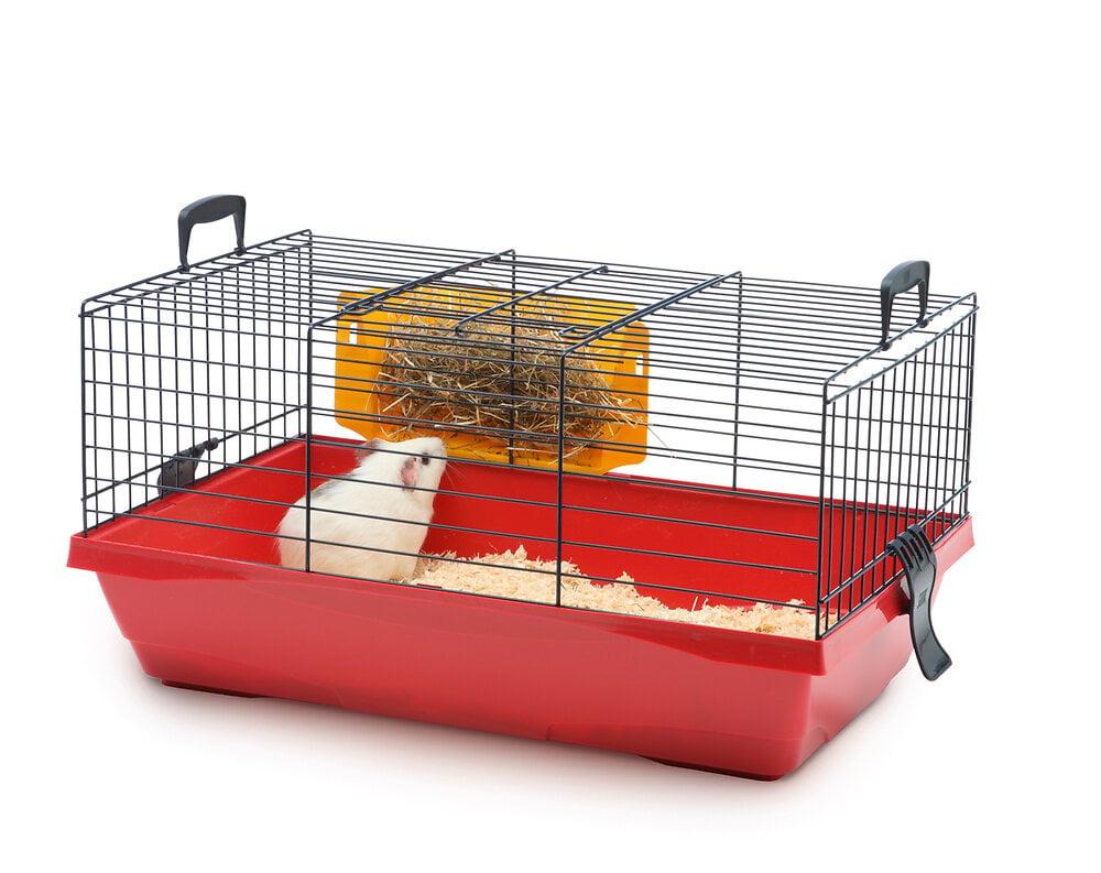 Cage Titus1 55cm