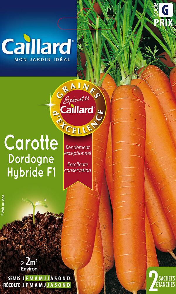 Carotte Dordogne Hybride F1