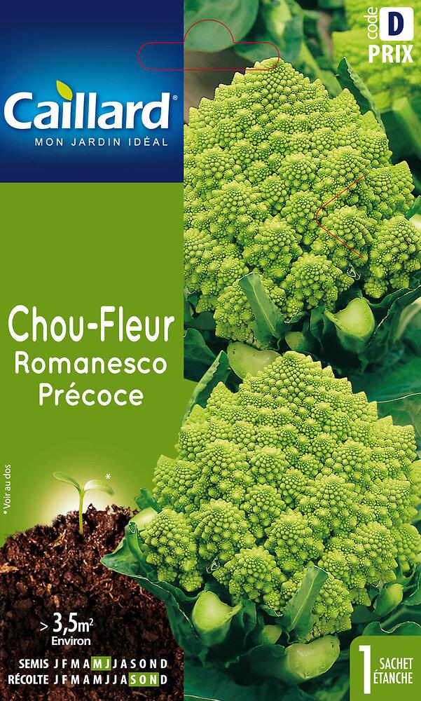 Chou-Fleur Romanesco précoce