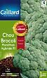 Chou brocoli Marathon Hybride