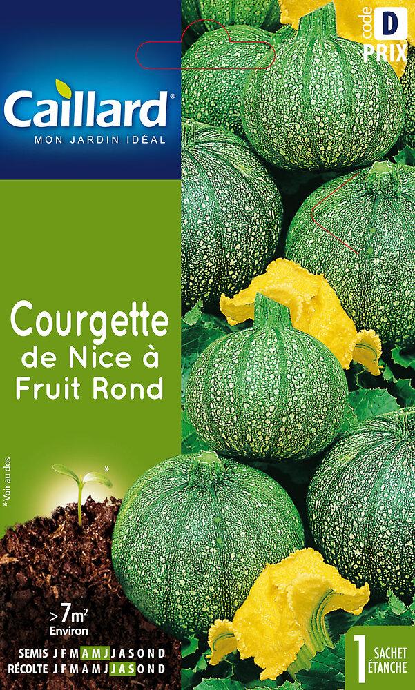 Courgette de Nice à fruit rond