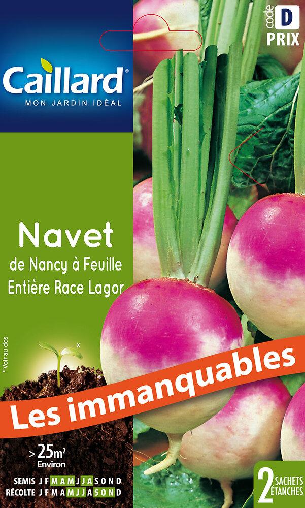 Navet de Nancy race Lagor