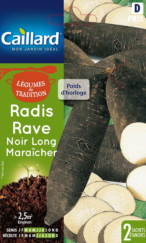 Radis rave noir long Maraicher