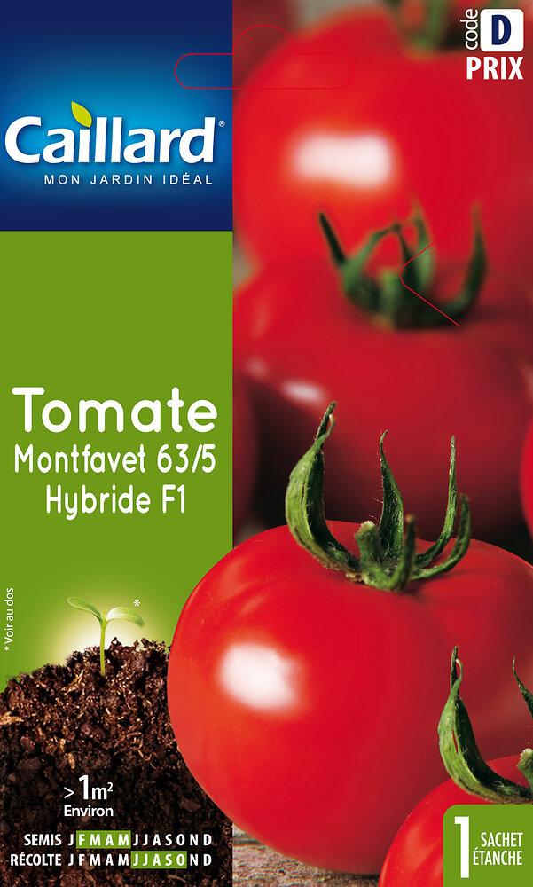 Tomate Montfavet 63/5 Hybride