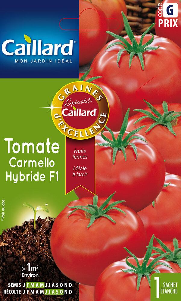 Tomate carmello Hybride
