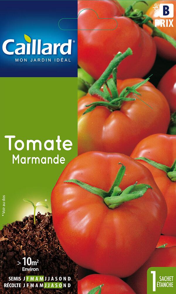 Tomate Marmande VF