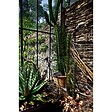 toile 30x45 verriere&cactus