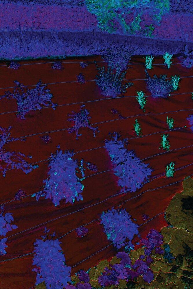 Toile de paillage tissée spécial paysages 3.25x 20m