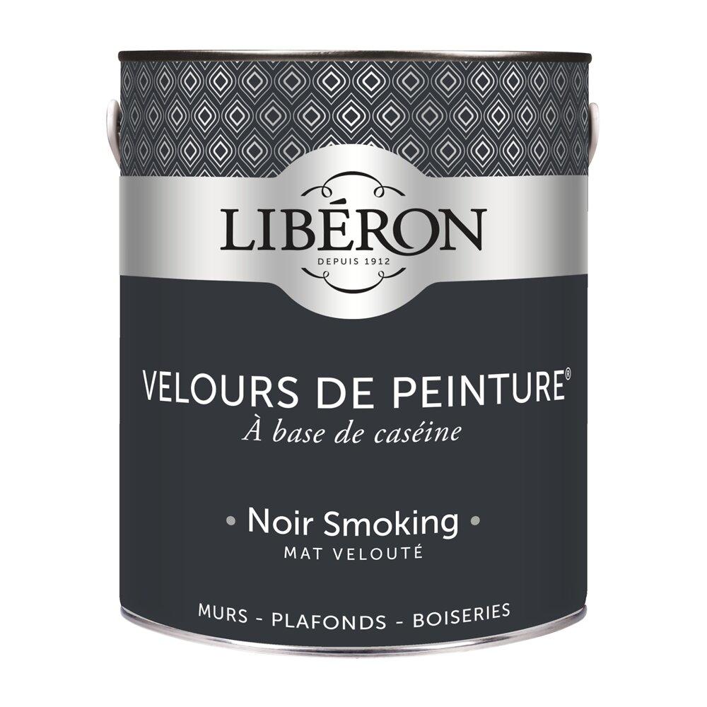 Velours de peinture Mat Noir smoking Pot 2.5l