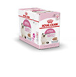 Aliment chat KITTEN MOUSSE 12x85g