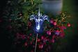 Figurine solaire Lysflora Transparent hauteur 76cm