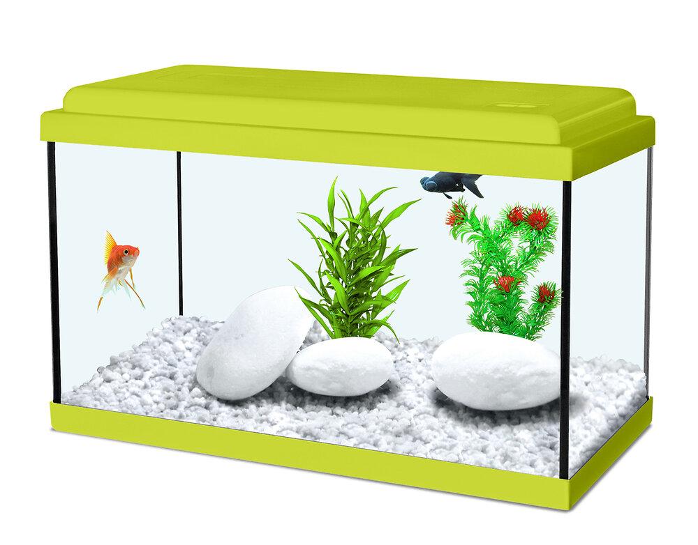 Aqua nanolife kidz 40 vert
