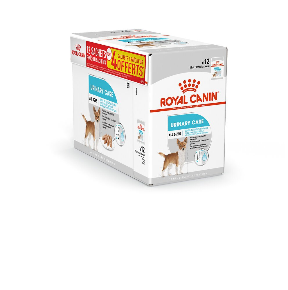 Aliment chien URINARY CARE MOUSSE12X85G