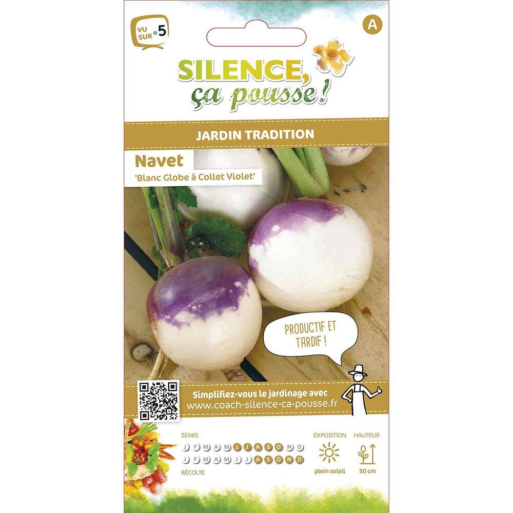 Semences de navet blanc globe à collet violet 5g