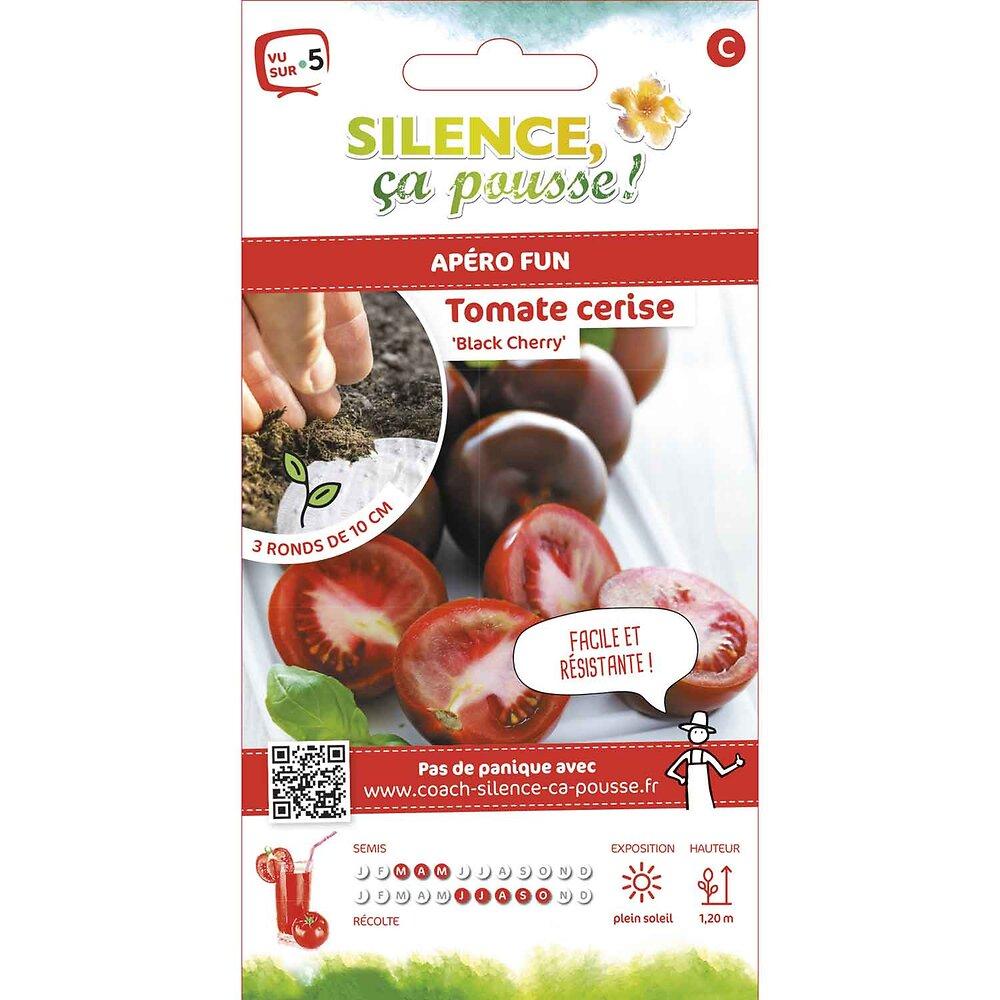 Semences de tomate black cherry rondg