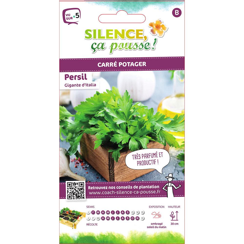 Semences de persil géant d'italie 5g