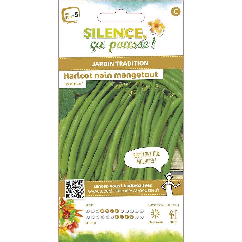 Semences de haricot nain mangetout cosses vertes braimar 15g