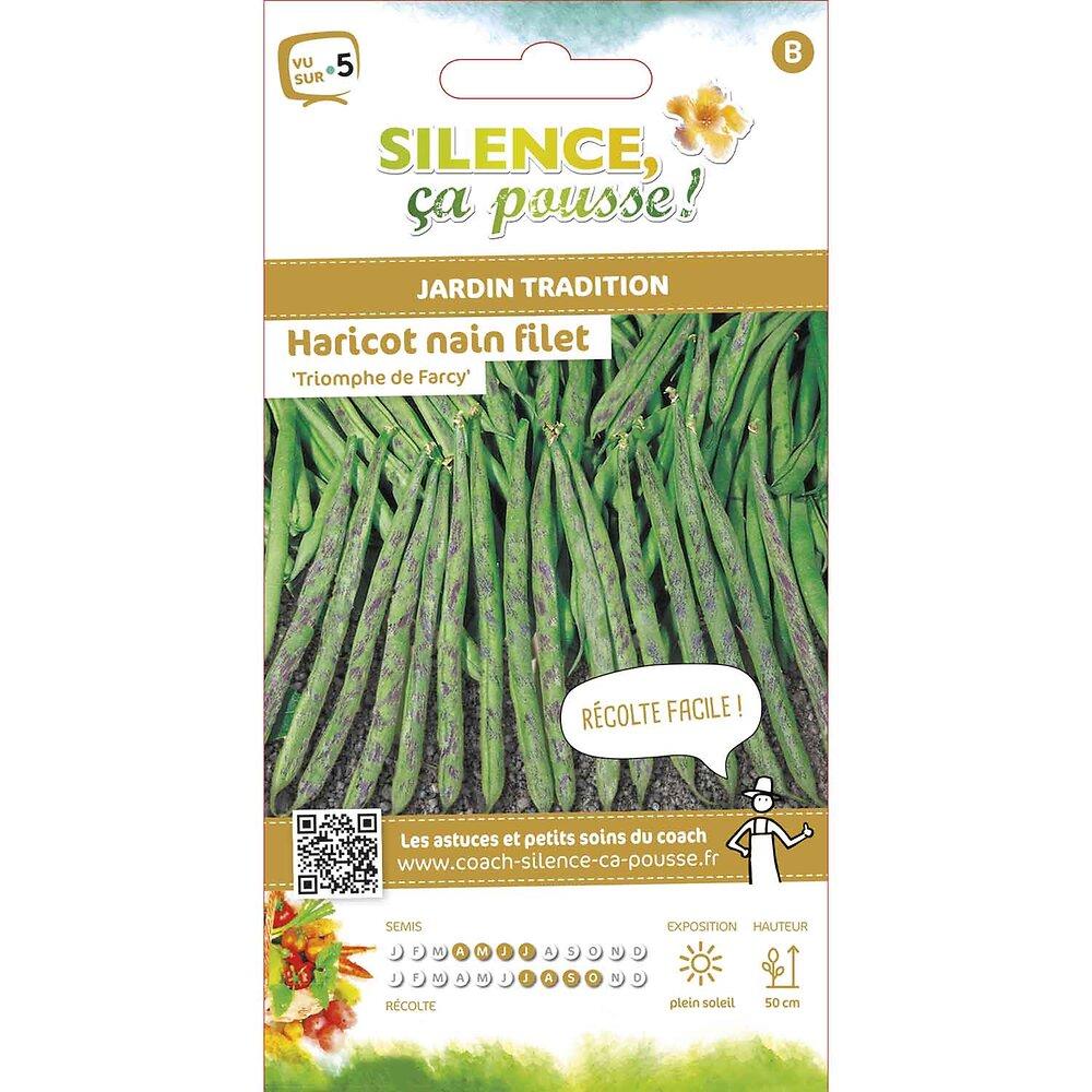Semences de haricot nain filet cosses vertes triomphe de farcy 15g