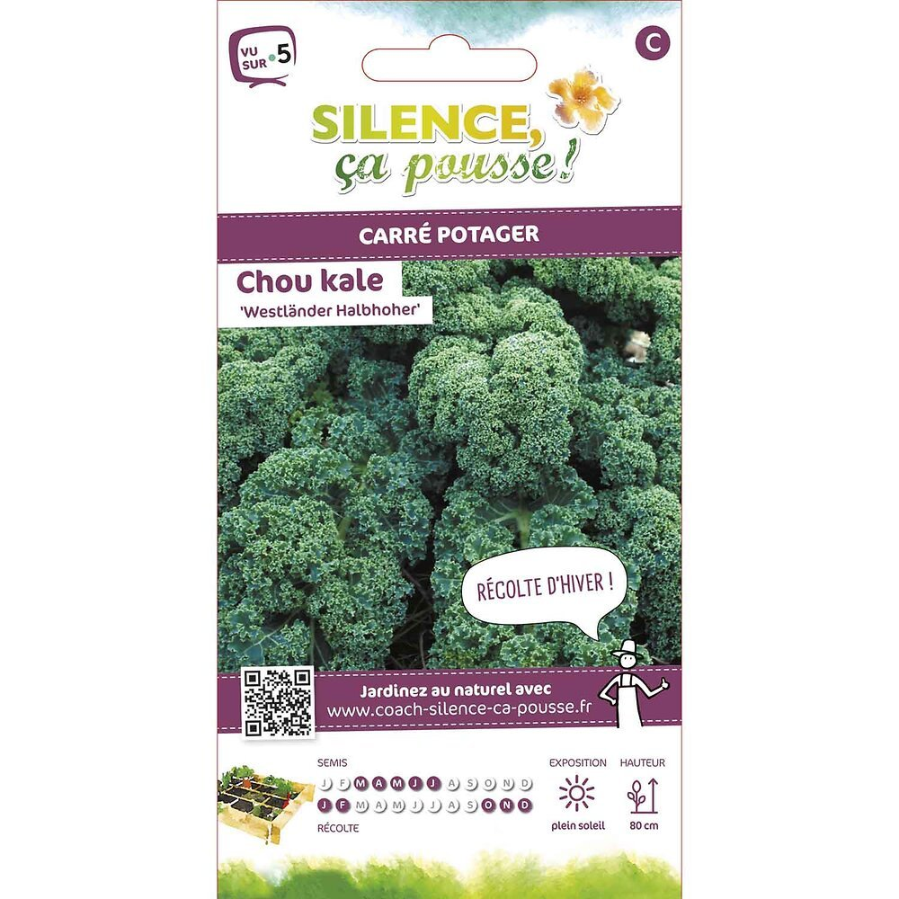 Semences de chou kale westlander halbhoher 1g