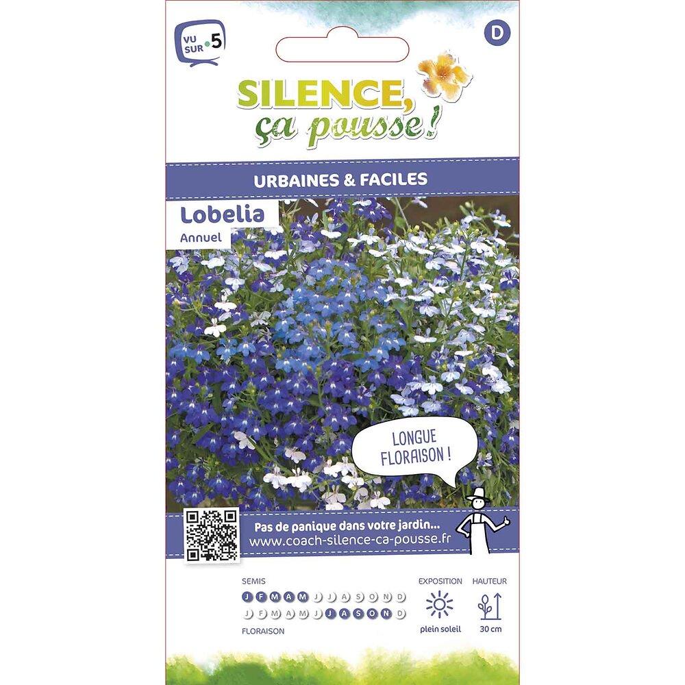 Semences de lobelia erinus 0.5g