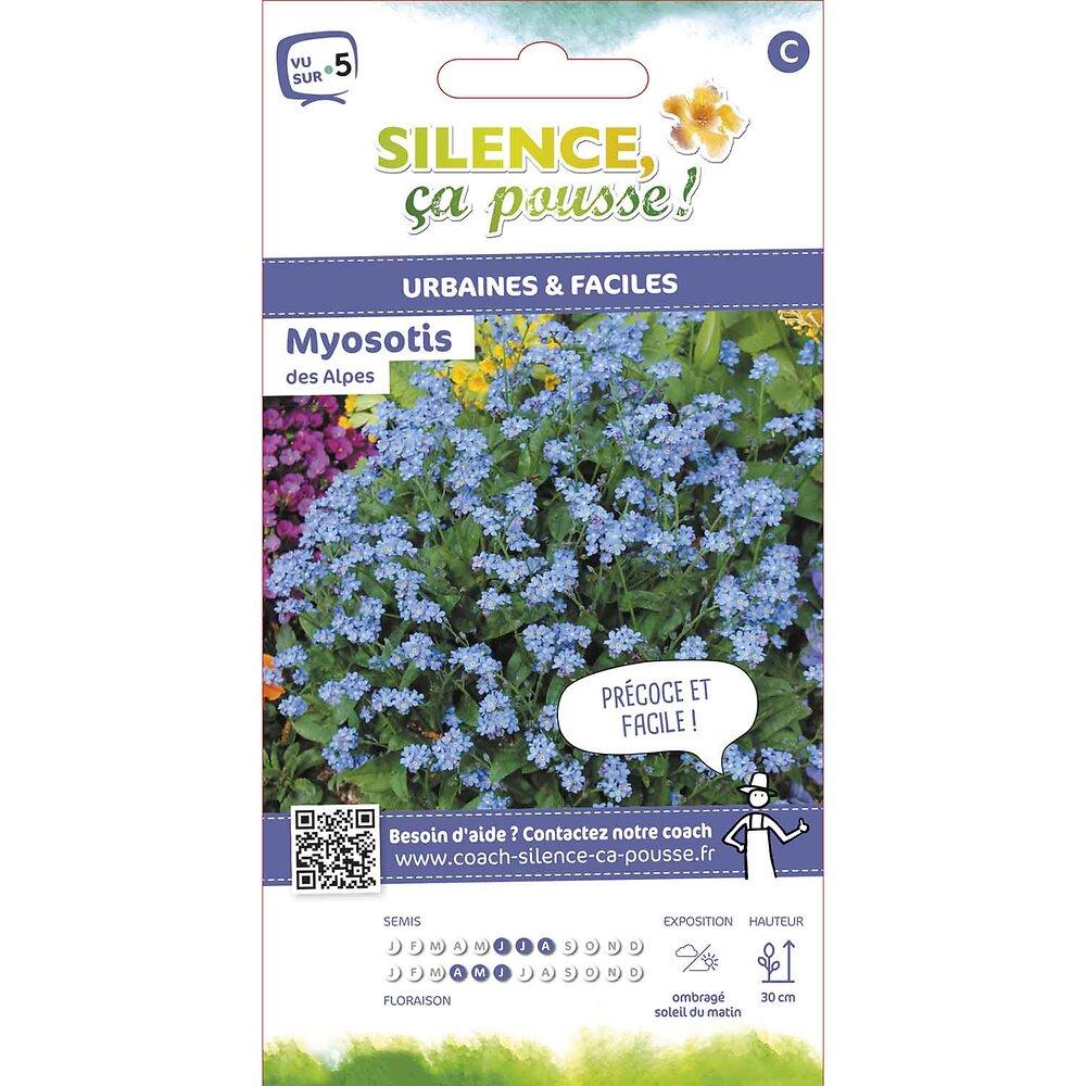 Semences de myosotis des alpes bleu 0.8g