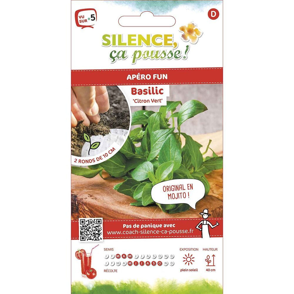 Semences de basilic citron vert rondg