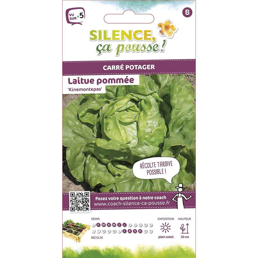 Semences de laitue pommée kinemontepas 3.5g