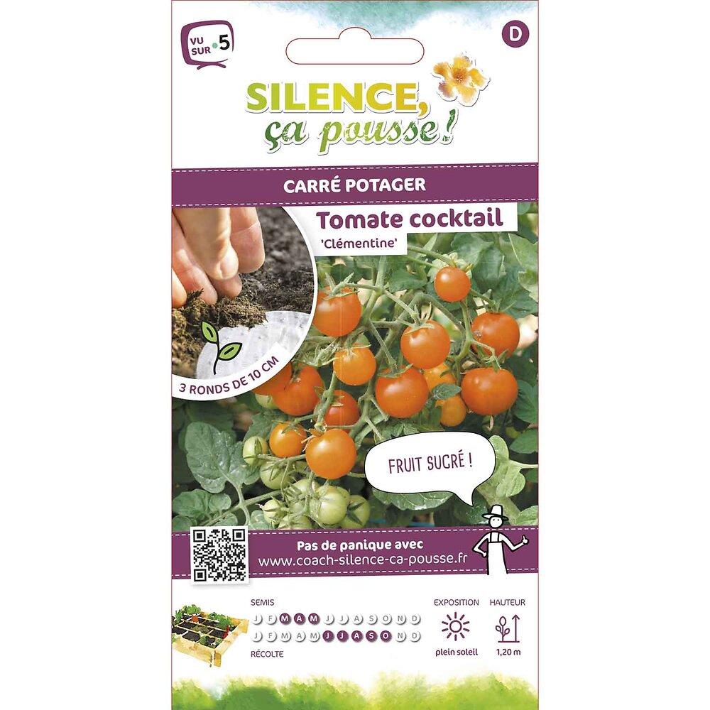 Semences de tomate cocktail clémentine rondg