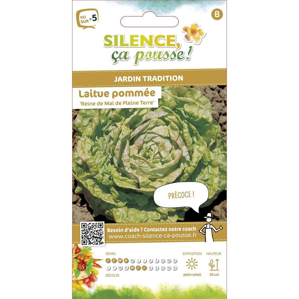 Semences de laitue pommée reine de mai de pleine terre 3.5g