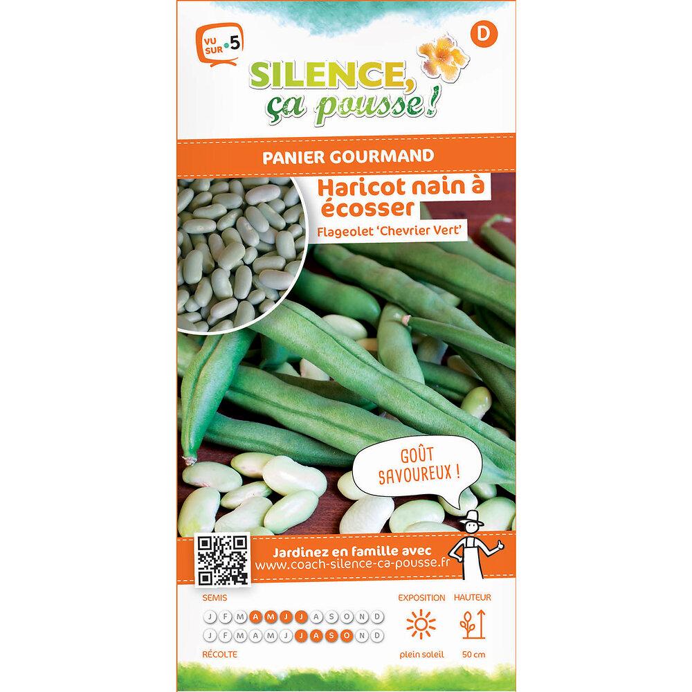 Semences de haricot nain à écosser flageolet chevrier vert 80g