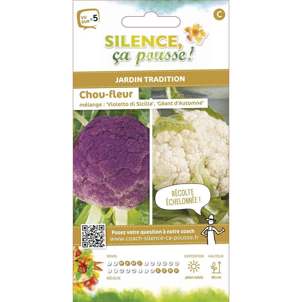 Semences de chou fleur en mélange 1.5g