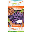 Semences de haricot à rame mangetout à cosses violettes 80g