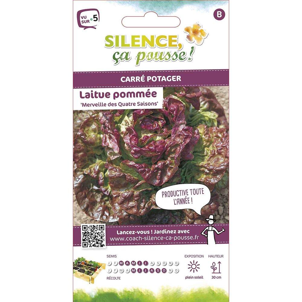 Semences de laitue pommée merveille des quatre saisons 3.5g