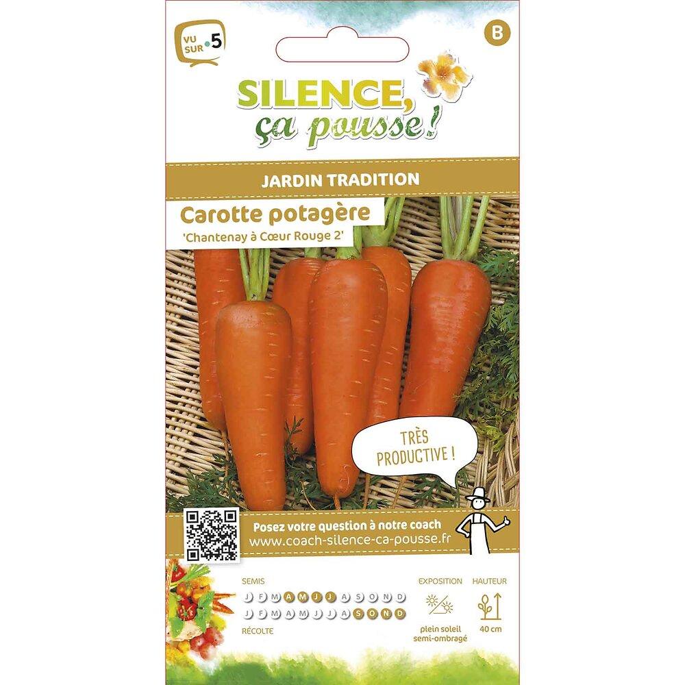 Semences de carotte potagère chantenay à coeur rouge 2 5g