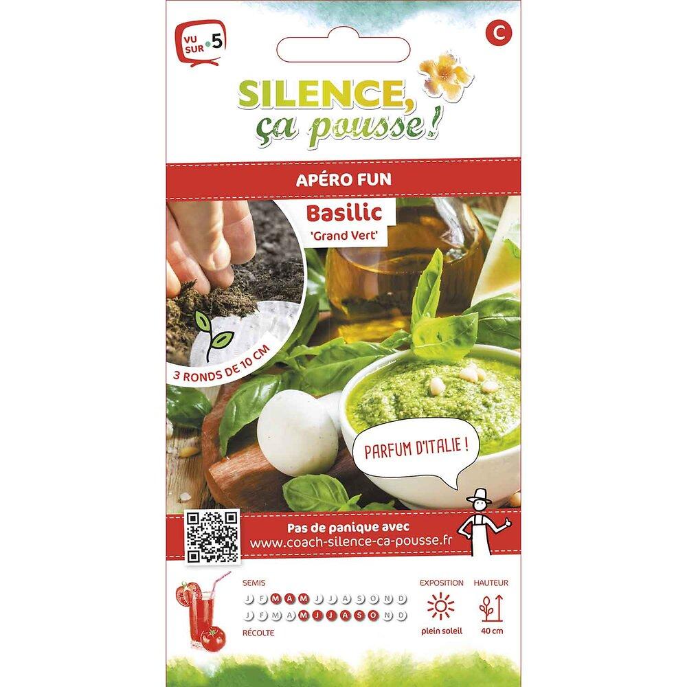 Semences de basilic grand vert rondg