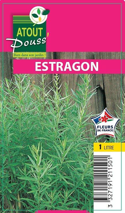 Estragon en pot de 1L