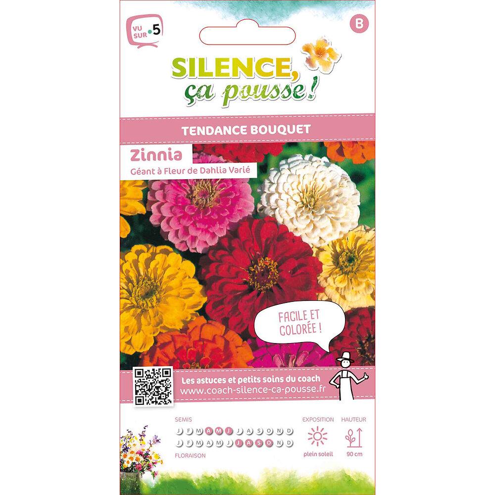 Semences de zinnia géant à fleur de dahlia variée 2g