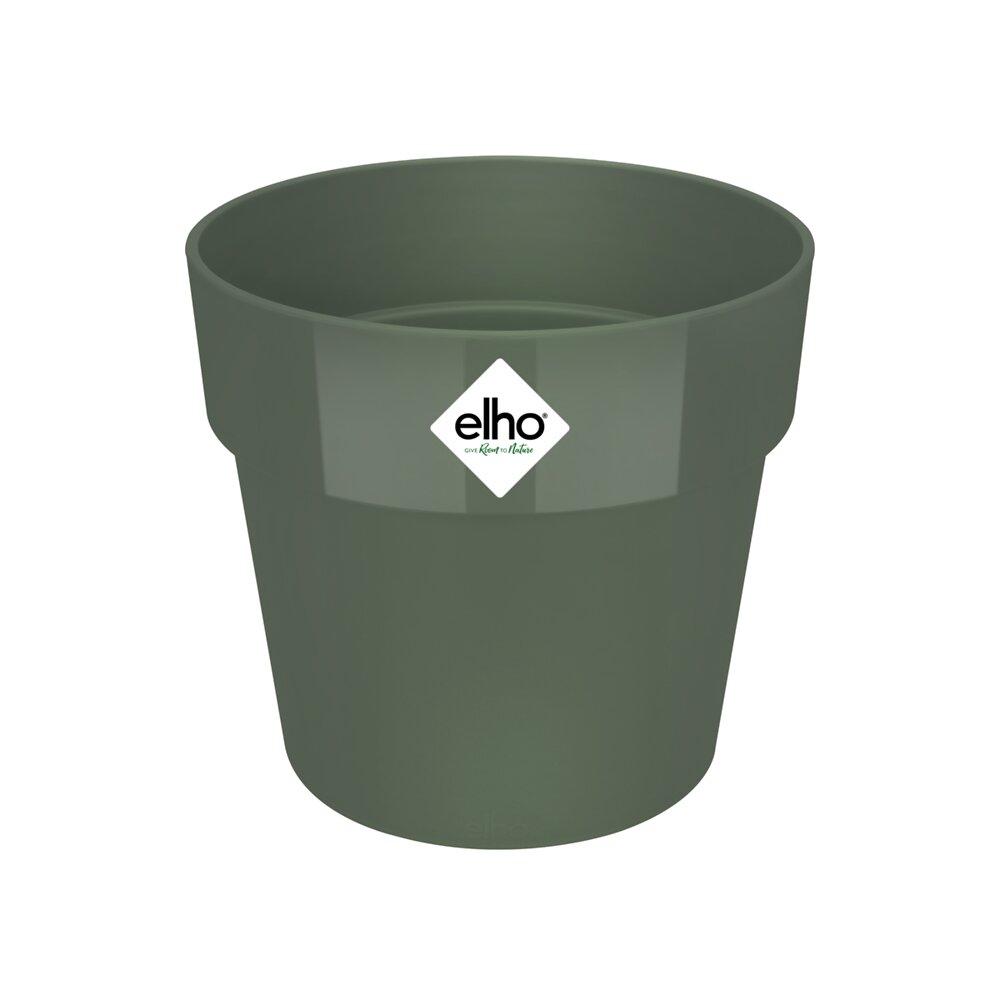 b.for original round 14 leaf green