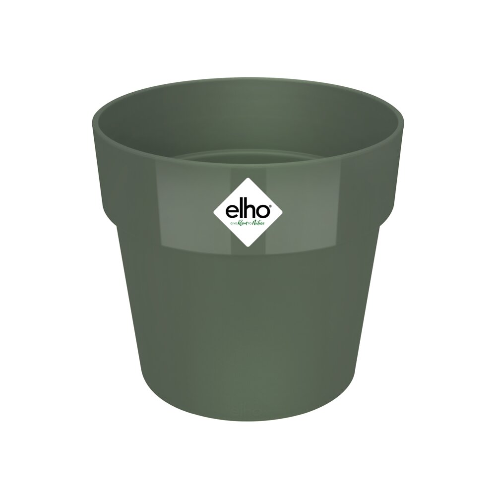 b.for original round 16 leaf green