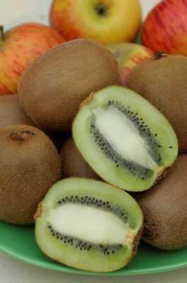 Kiwi autofertile en pot de 4L