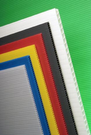 Plaque polypropylène alvéolaire blanc 100x100cm 3.5mm
