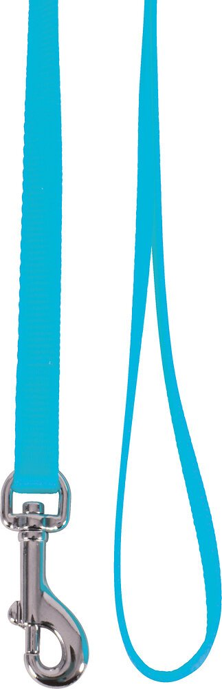 Laisse nylon chat turquoise