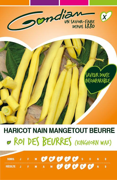 Haricot nain mangetout beurre roi des beurres 'kinghorn wax'