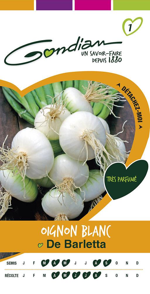 Oignon blanc de Barletta