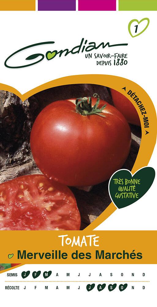 Tomate merveille des marches