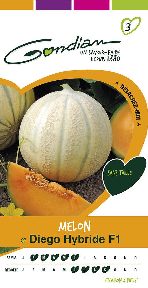 Melon diégo hybride f1