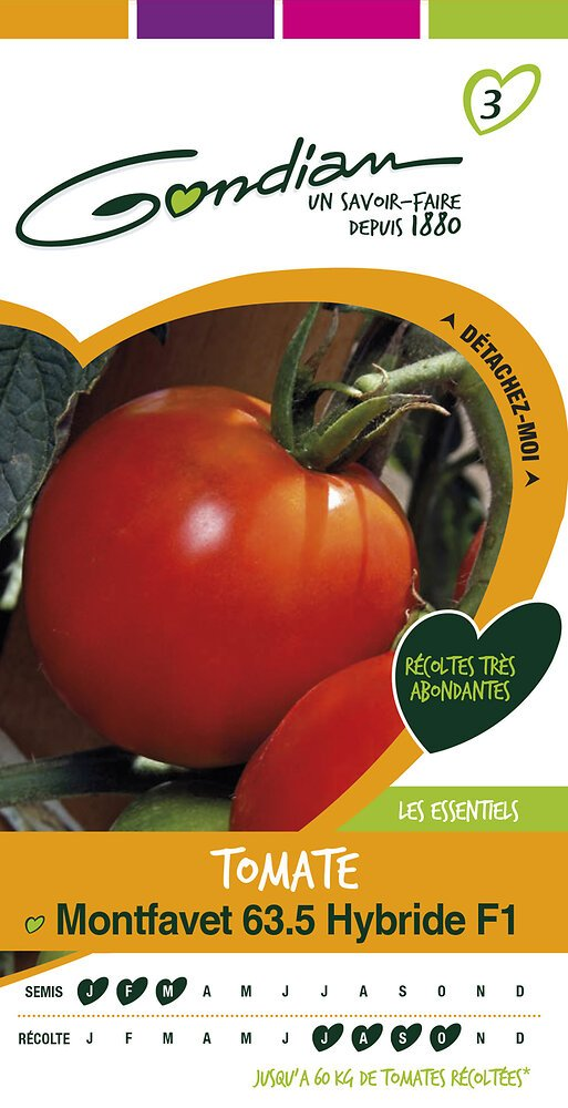 Tomate montfavet 63.5 hybride f1