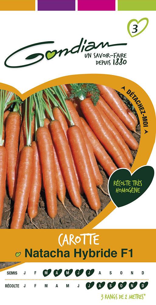 Carotte potagère Natacha hybride f1